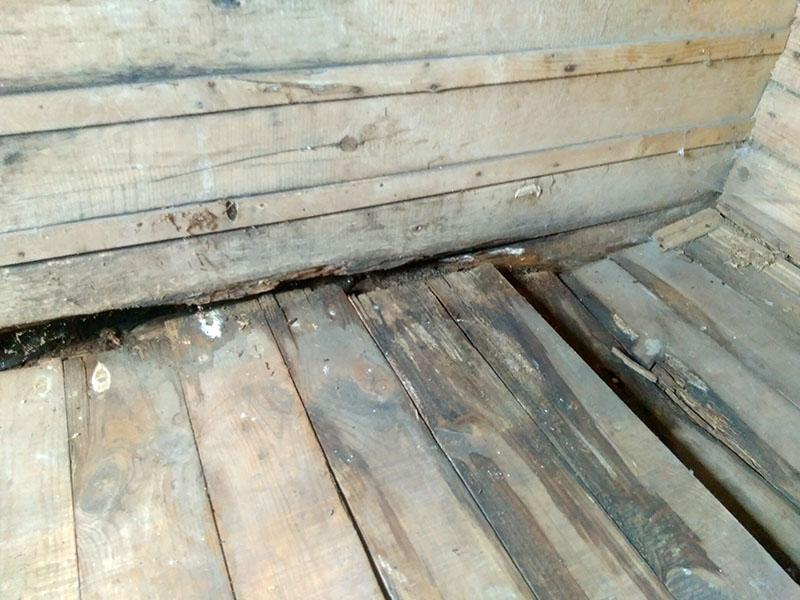 Вот и последствия неправильной обработки, монтажа и ухода за древесиной