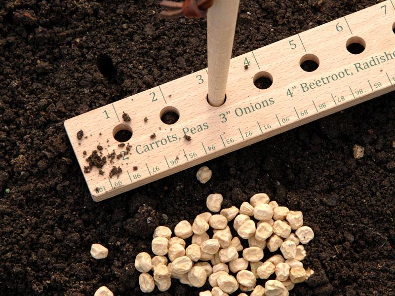 С помощью садовой линейки вы сможете создать красивые ровные ряды саженцев на своей грядке