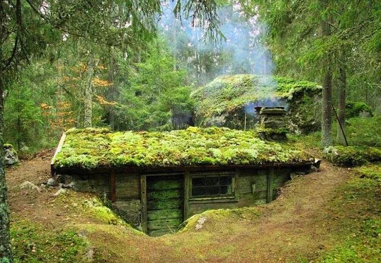 Баня в лесу