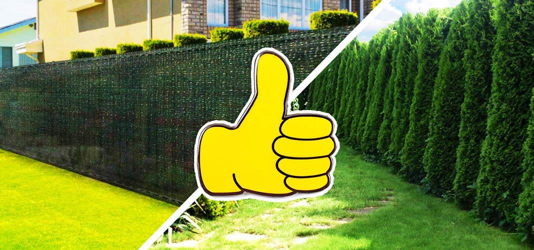Копеечный забор без опор для сада