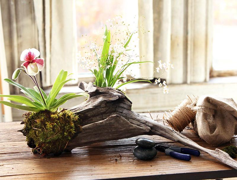 Обычная коряга, найденная в лесу, может стать произведением искусства и главным украшением вашей гостиной или спальни