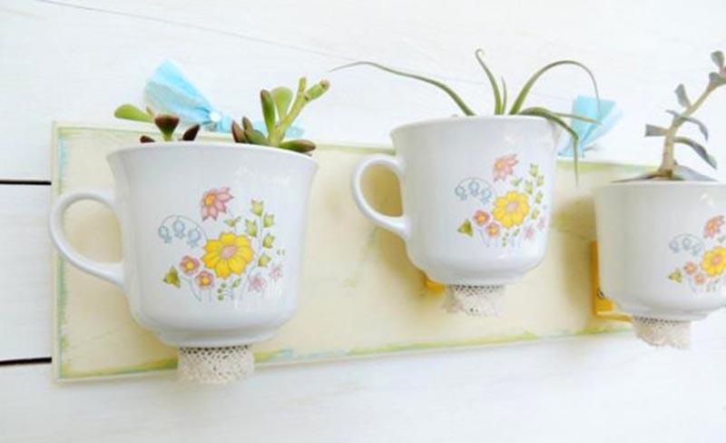 А вот обычные чайные чашки понравятся суккулентам. Кактусы имеют небольшую корневую систему, так что им такой объём как раз будет впору