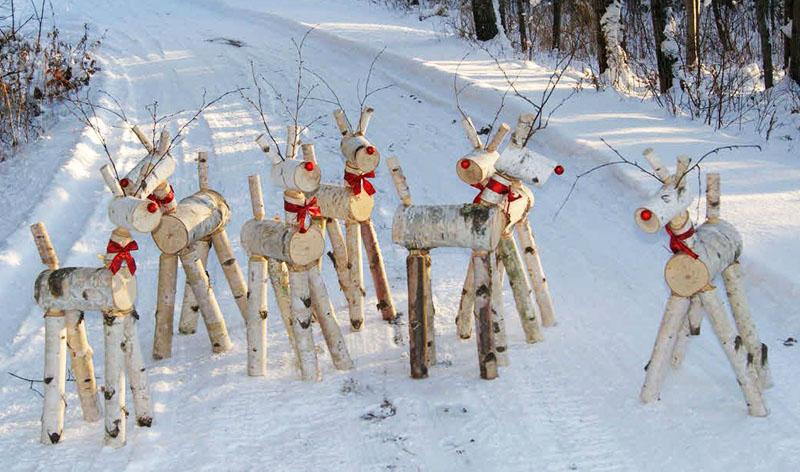 Вот эти красноносые олени точно сбежали от Деда Мороза на вашу дачу. Приютите их в своём саду на время праздников