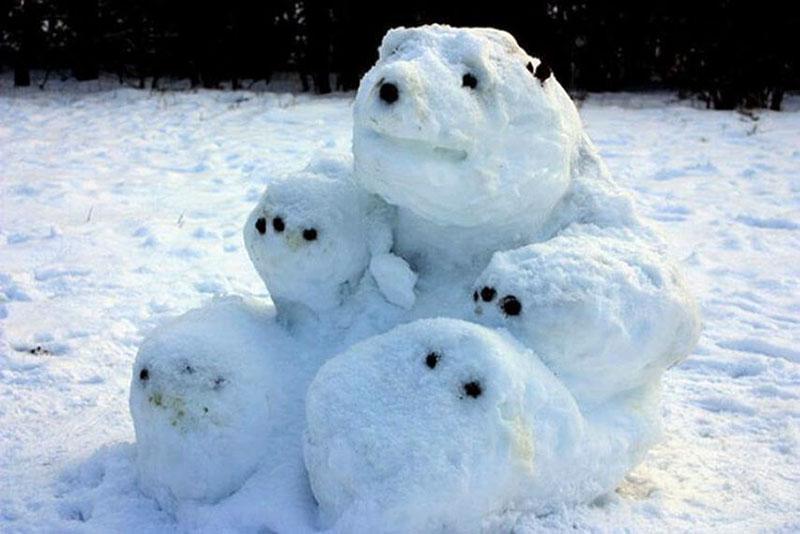 Снеговик может стать тюленем или полярным медведем, большой черепахой