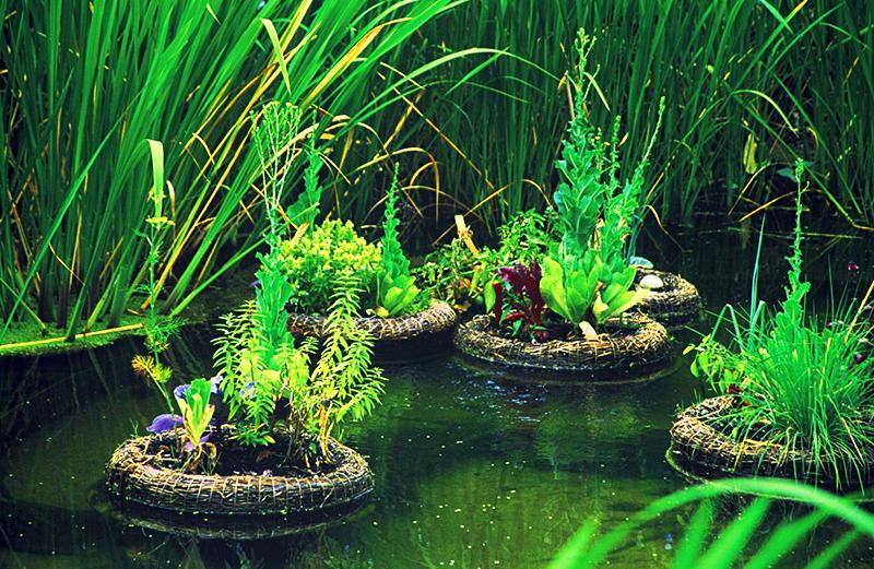 Островки из пены отлично подходят для небольших водоёмов