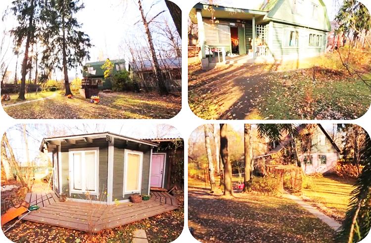 Во время строительства дома все деревья на участке были сохранены