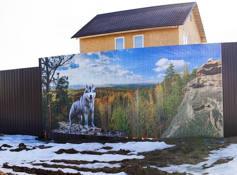 Картина на заборе
