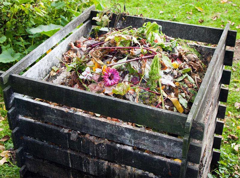 Если вы думаете, что на вашем участке мало органического мусора – то просто начните его собирать, и вы удивитесь, как быстро наберётся куча